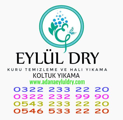 Dry Can Kuru Temizleme Adana